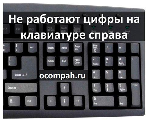 Как сделать чтобы работали цифры на клавиатуре