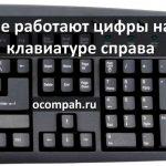 Почему не работают цифры на клавиатуре справа? (Решение)